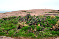 Enchanted Rock State Natural Area 031