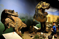 KY Creation Museum (82)