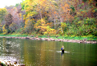 Trout fisherman in White River below Beaver Dam AR M1101